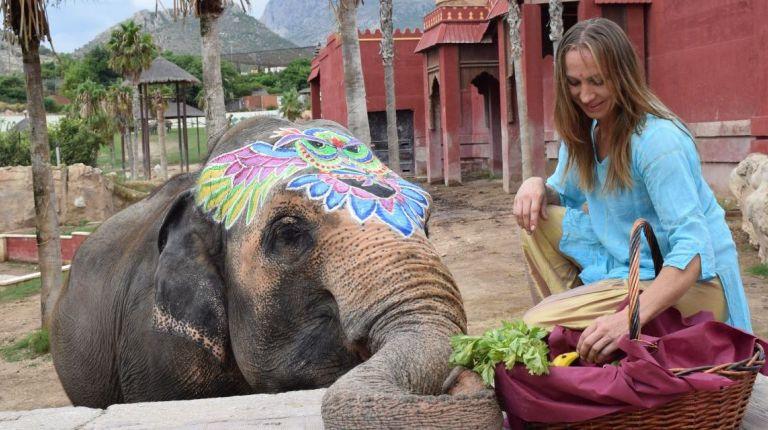 Terra Natura Benidorm conmemora el 46º cumpleaños de la elefanta Petita con una gran batalla de colores holi