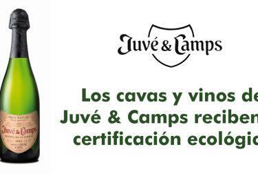Los cavas y vinos de Juvé & Camps reciben la certificación ecológica