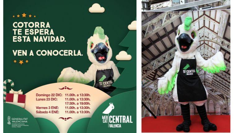 La mascota 'Cotorra' visitará el Mercado Central en Navidad para encontrarse con los niños
