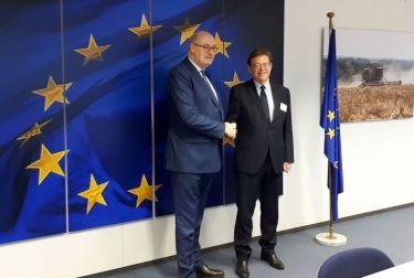 Puig logra en Bruselas un cambio en el Plan de Desarrollo Rural para un plan piloto que permita paliar los efectos de la 'xylella'