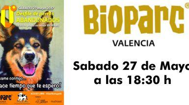 Sole Giménez presentará el 10º desfile  AUPA - BIOPARC Valencia