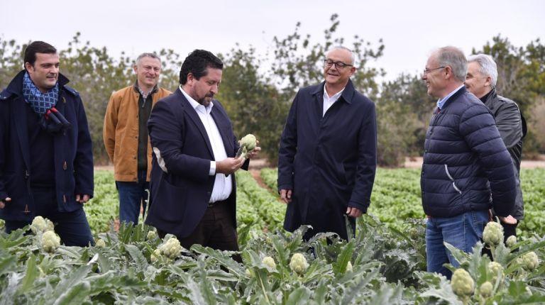 La Diputación fomenta la calidad de la alcachofa de Benicarló como producto emblemático de la provincia con Castelló Ruta de Sabor